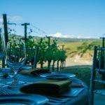 nordic walking food wine tour valdadige verona