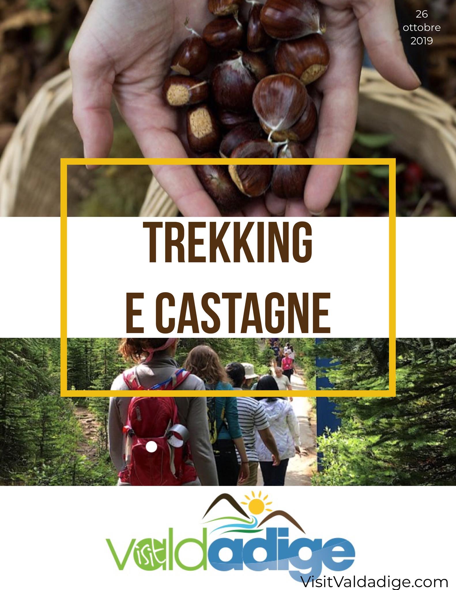 sabato 26 ottobre 2019 TREKKING nei boschi, raccolta Castagne, e poi del buon V...