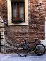 """Potrebbe essere un'immagine raffigurante bicicletta, attività all'aperto, muro di mattoni e il seguente testo """"Paul Urban Bikes"""""""